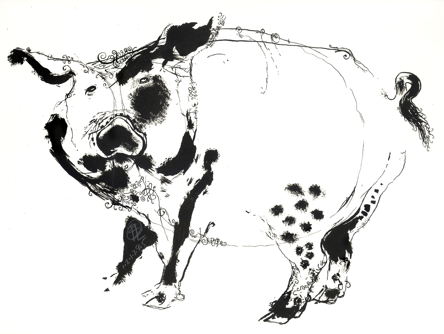 Logan BEWICKS PIG 4